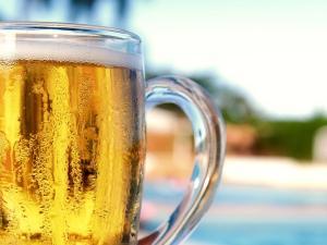 beer--light---13280137